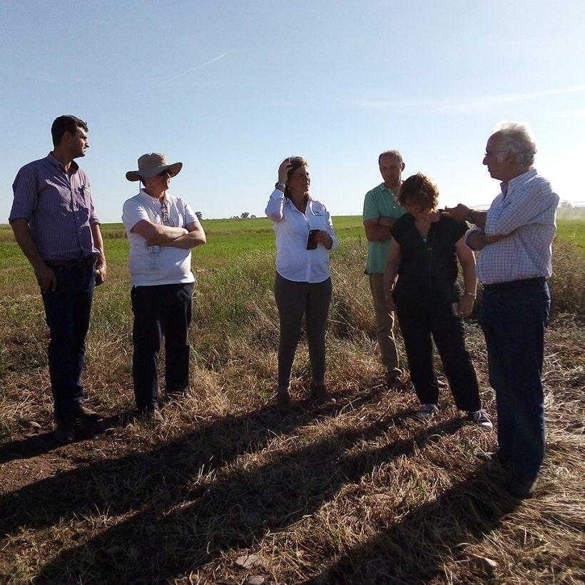 Dia do Agricultor e Dia LVR 2019